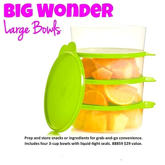 Tupperware Big Wonder Large Bowls